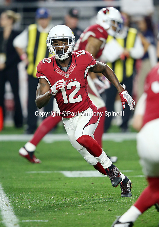 Arizona Cardinals wide receiver John Brown (12) goes in motion as he runs a reverse during the NFL NFC Divisional round playoff football game against the Green Bay Packers on Saturday, Jan. 16, 2016 in Glendale, Ariz. The Cardinals won the game in overtime 26-20. (©Paul Anthony Spinelli)