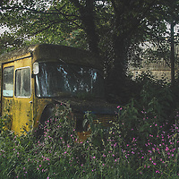Vintage bus abandoned in countryside
