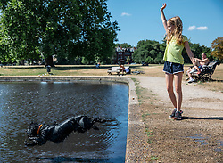© Licensed to London News Pictures. 23/07/2018. London, UK. Puffin the dog and Emily Sutherland, 10, play by the boating pond on Clapham Common, south London, as hot weather continues in the capital. Forecasters are predicting record temperatures this week. Photo credit: Rob Pinney/LNP