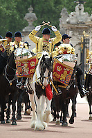 Queen's Birthday Parade Trooping The Colour, London, UK, 12 June 2010. For piQtured Sales contact: Ian@piqtured.com Tel: +44(0)791 626 2580 (Picture by Richard Goldschmidt/Piqtured)