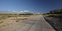 RUTA 89 CAMINO A POTRERILLOS, LA CARRERA, TUPUNGATO, PROVINCIA DE MENDOZA, ARGENTINA