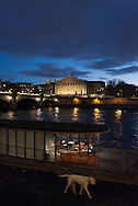 France. Paris cityscape at sunset. view from the quay des Champs elysees /