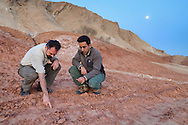 Luke Hunter and Mohammad Farhadinia looking for cheetah tracks, Kavir National Park, Iran