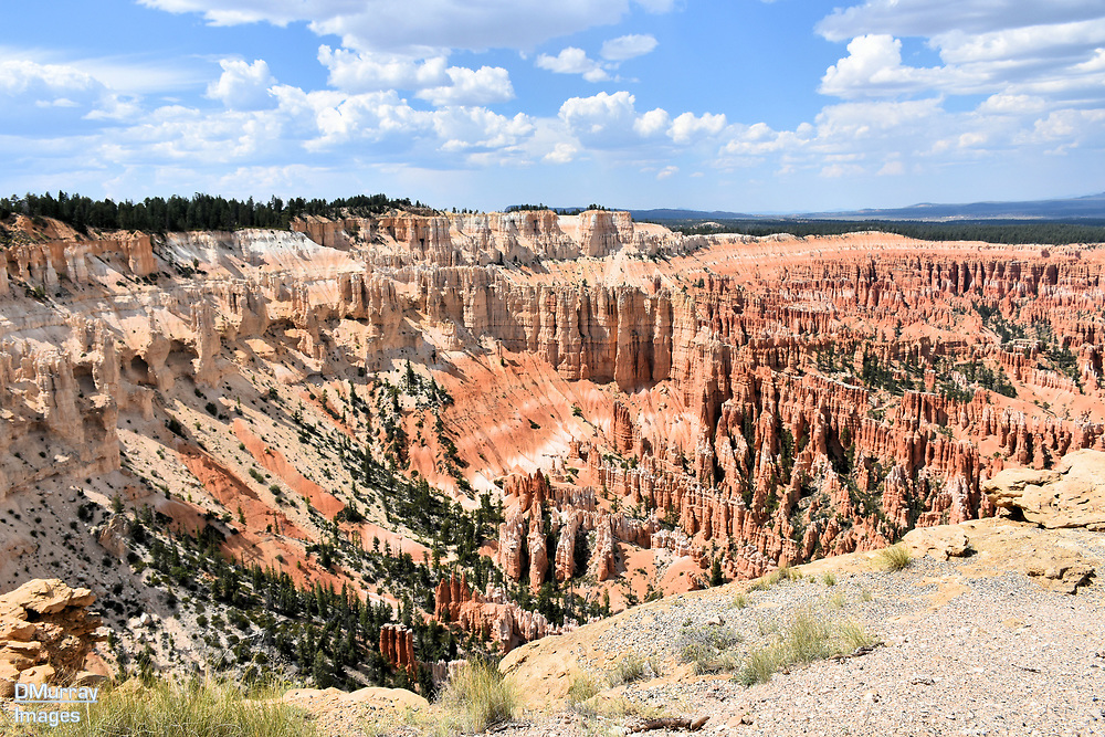 Amphitheater, Bryce Canyon National Park, Utah, USA