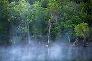 Fog lifts on a creek near Oran, Texas.