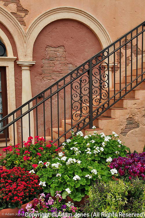 Flowers and stairs, Disney World, Florida