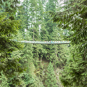 Tilt Shift Capilano Bridge