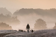 UNITED KINGDOM, London: 08 November 2016. A dog walker braves the frost during sunrise this morning in Richmond Park. Rick Findler / Story Picture Agency