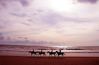 A group of horse riders on Petinget beach in Bali, Indonesia.