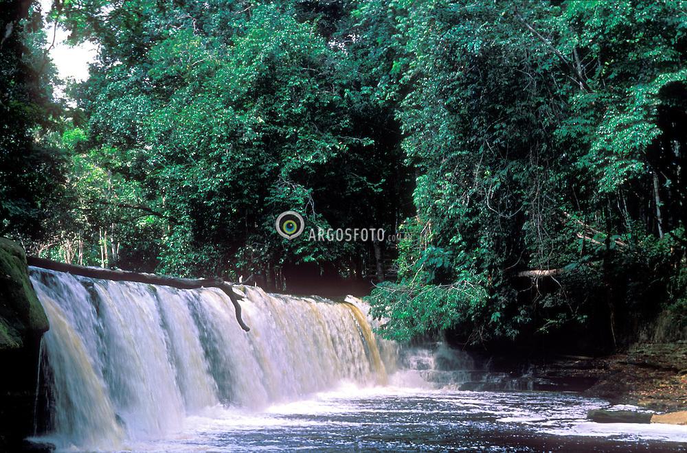 Presidente Figueiredo, Amazonas, 26/11/03          .Cachoeira Natal. A Amazonia e uma regiao na America do Sul, definida pela bacia do rio Amazonas e coberta em grande parte por floresta tropical. E a maior floresta tropical pluvial do mundo. E chamado tambem de Amazonia o bioma que, no Brasil, ocupa 49,29% do territorio, sendo o maior bioma terrestre desse pais, onde e constituida por varios ecossistemas./ Amazonia is a moist broadleaf forest in the Amazon Basin of South America. The Amazon Rainforest represents over half of the planet's remaining rainforests. Amazonian rainforests comprise the largest and most species rich tract of tropical rainforest that exists..Foto Marcos Issa/Argosfoto