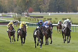 October 28, 2017 - Compiegne, France, France - Course 5 - Paulougas - Jacques Ricou (Credit Image: © Panoramic via ZUMA Press)