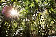 Tapajós and Munduruku