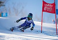Francis Piche Invitational Giant Slalom U12 girls first run with Gunstock Ski Club.  <br /> ©2017 Karen Bobotas Photographer