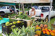 Farmers Market, Hanalei, Kauai, Hawaii