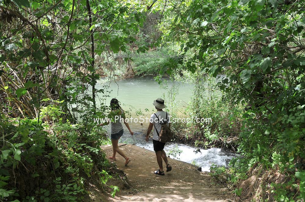 Israel, Upper Galilee, Hazbani River (AKA Snir River) a tributary of the Jordan river.