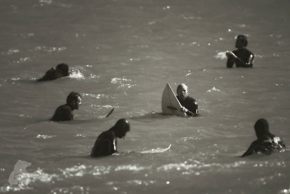 Six surfers float on their boards while waiting for the next wave, Lyall Bay, Wellington, New Zealand.