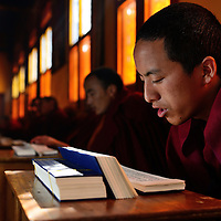 Dedication of a Monk WOSER GYALSEN reading the Holy book. A religious ceremony at the Tibetan YungDrung Bon Monastery at Dolanji.