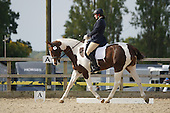 06 - 12th Oct - Affiliated Dressage