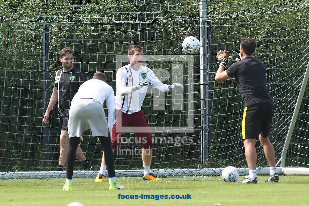 Michael McGovern of Norwich is put through his paces by Interim Goalkeeping Coach Eddie Wooten during the Norwich City Pre-Season Training session at Hotel Klosterpforte, Harsewinkel, Germany<br /> Picture by Paul Chesterton/Focus Images Ltd +44 7904 640267<br /> 18/07/2017