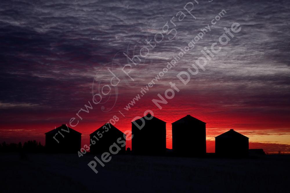 Five grain bins silhouetted against the sunrise...©2009, Sean Phillips.http://www.Sean-Phillips.com