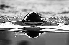 20150516 Grundfos Olympics