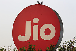 March 22, 2019 - Mumbai, India - Birds sit on an advertisement of Reliance Jio Infocomm Ltds in Mumbai, India on 22 March 2019. As per the statistics by Telecom Regulatory Authority of India's (TRAI), Ambani leads Reliance Jio Infocomm Ltd has added 9.3 million new subscribers in January 2019. On the other hand, Vodafone Idea Ltd. has lost 3.5 million subscribers but still leads with an overall market share as per media report. (Credit Image: © Himanshu Bhatt/NurPhoto via ZUMA Press)