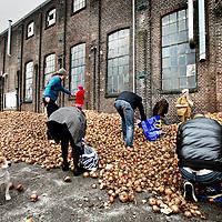 Nederland, Amsterdam , 30 maart 2012..Uienactie bij Roest..Boer Krispijn uit Flevoland heeft dit jaar een prachtige oogst gehad: zijn schuren liggen vol. Nu hebben zijn ondernemers het af laten weten, en zit hij met 500 ton aardappels die geen cent opbrengen. Wat een verspilling! Het ergste is nog dat nu al de eerste aardappelen uit het buitenland in de winkels liggen. Te zot voor woorden. Omdat hij toch niks krijgt voor zijn aardappelen, kan-ie ze net zo goed gratis weggeven. Op 1 april om 15:00 uur dumpen we een ton aardappelen op de Dam in Amsterdam. Kom ze maar halen!Daarna gaan we stamppot maken met de gratis uien die Mediamatic weggeeft tijdens het Uienfeest in Amsterdam Roest..Foto:Jean-Pierre Jans