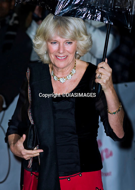 """CAMILLA, DUCHESS OF CORNWALL.2010 Prince's Trust Rock Gala.The Prince's Trust Rock Gala 2010 supported by Novae, Royal Albert Hall, London_17/11/2010.Mandatory Photo Credit: ©Dias/DIASIMAGES..**ALL FEES PAYABLE TO: """"NEWSPIX INTERNATIONAL""""**..PHOTO CREDIT MANDATORY!!: DIASIMAGES(Failure to credit will incur a surcharge of 100% of reproduction fees)..IMMEDIATE CONFIRMATION OF USAGE REQUIRED:.DiasImages, 31a Chinnery Hill, Bishop's Stortford, ENGLAND CM23 3PS.Tel:+441279 324672  ; Fax: +441279656877.Mobile:  0777568 1153.e-mail: info@diasimages.com"""