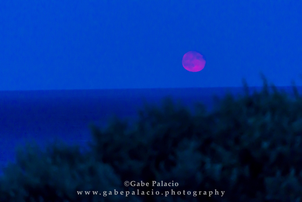 The super moon rising at the Cape Cod Highland Lighthouse in Truro, Ma, on August 11, 2014. (photo by Gabe Palacio)