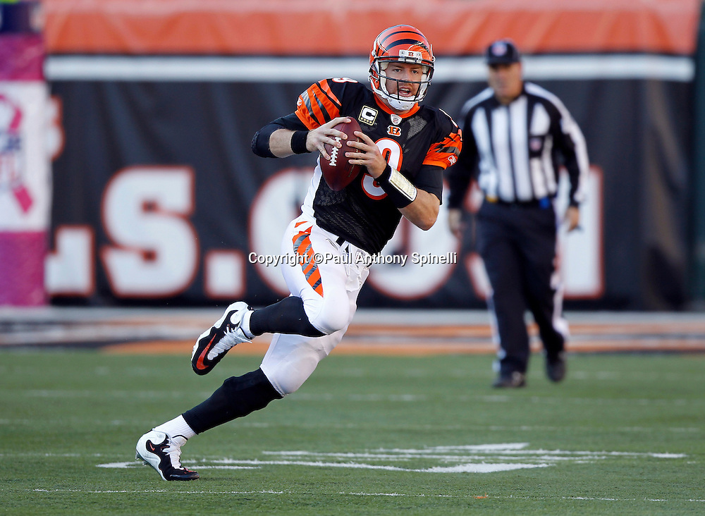Cincinnati Bengals quarterback Carson Palmer (9) runs the ball in the fourth quarter during the NFL week 8 football game against the Miami Dolphins on Sunday, October 31, 2010 in Cincinnati, Ohio. The Dolphins won the game 22-14. (©Paul Anthony Spinelli)