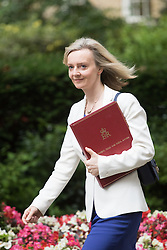Downing Street, London, July 5th 2016. Environment Food and Rural Affairs Secretary Elizabeth Truss arrives at 10 Downing Street for the weekly cabinet meeting