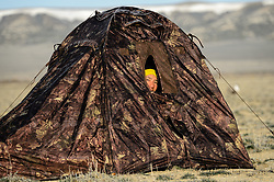 Wildlife photojournalist Noppadol Paothong at work in a blind in southwest Wyoming. ©John L. Dengler / DenglerImages.com