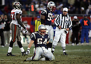 Linebacker Tedy Bruschi celebrates over sacking Tamp Bay's Chris Simms.  Patriots defeated the Buccaneers 28-0 at Gillette Stadium, 17 Dec 05.