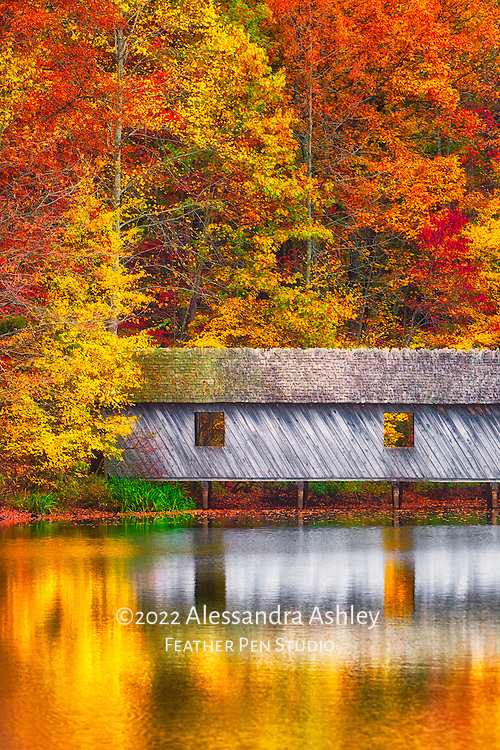 Fall foliage and reflections surround covered bridge at Madison County Nature Trail atop Green Mountain, Huntsville, AL.
