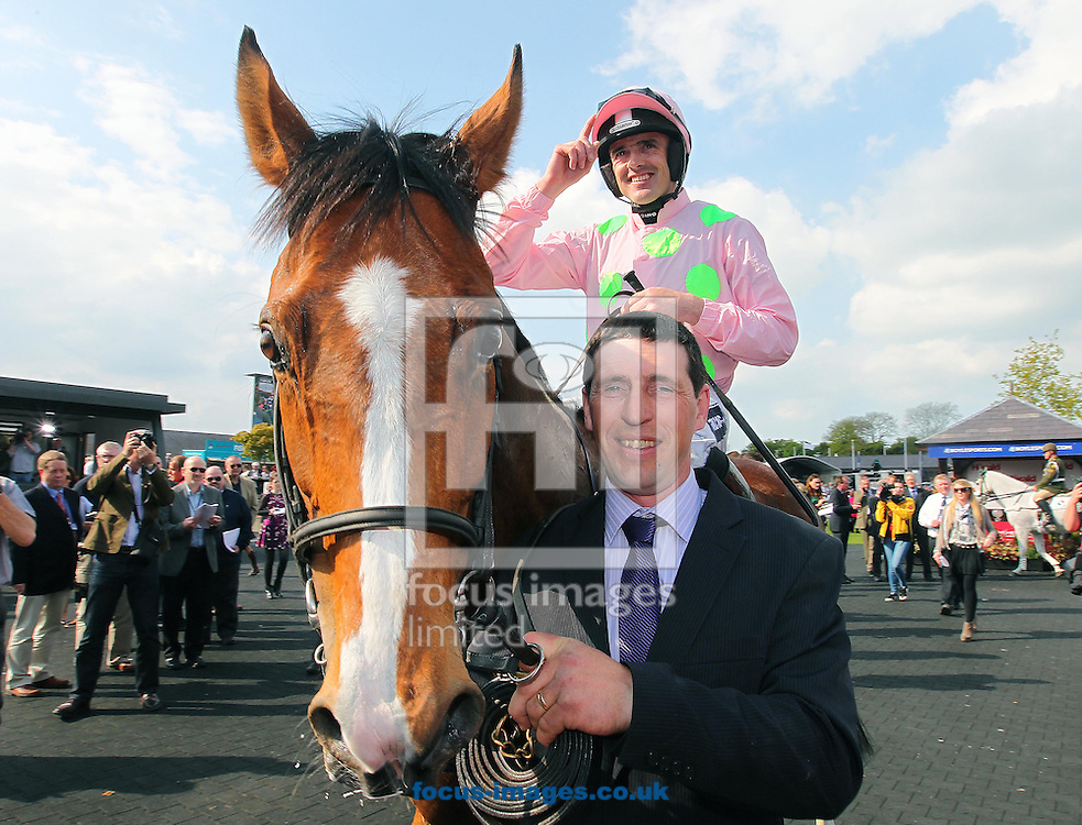 Ruby Walsh on Faugheen celebrates winning the Champion Novice Hurdle at Punchestown Festival at Punchestown Racecourse, Co.Kildare<br /> Picture by Lorraine O'Sullivan/Focus Images Ltd +353 872341584<br /> 29/04/2014