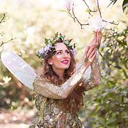 Magnolia Fairy