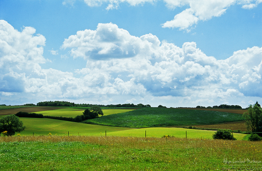 A bright green Belgian field in spring under a blue sky with fluffy white clouds.
