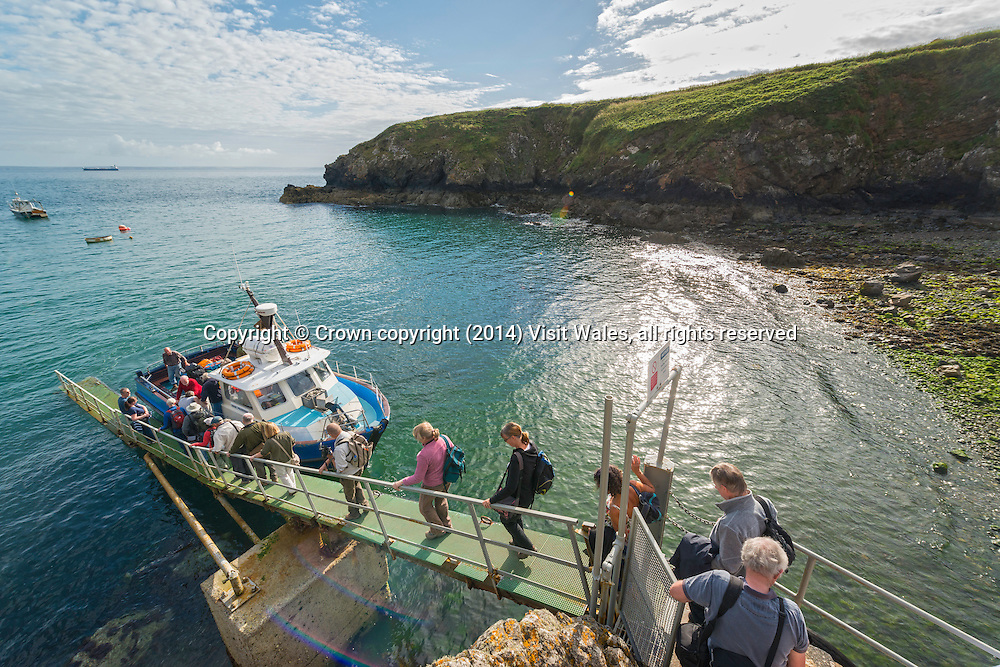 Group boarding Dale Princess boat at Martin's Haven<br /> Skomer<br /> Pembrokeshire<br /> South<br /> Birdwatching<br /> Activities and Sports