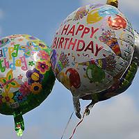 7.19.09 Irene Michul Birthday Party