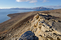 Vesla Fiord in Eureka Sound on West Ellesmere Island on Nunavut, Canada.