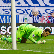 Pheonix and Blue, the Wigan mascots celebrate the goal scored by Wigan Athletic's Alex Revell. Wigan v Shrewsbury Town, 21st November 2015.