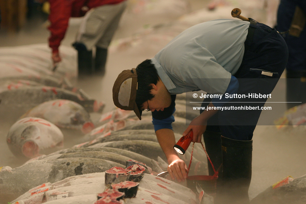 Frozen tuna being inspected prior to auction, at the Tsukiji wholesale fish market, the largest fish market in the world, in Tokyo, Japan, early morning on Tuesday, Nov. 28, 2006.  Japan is the world largest consumer of tuna, and now faces price rises in the cost of the delicacy food, following tuna fishing quota reductions imposed by the International Commission for the Conservation of Atlantic Tuna.