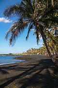 Punaluu Black Sand Beach,  Island of Hawaii