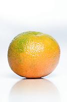 Studio shot of mandarin on white background.
