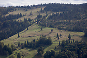 With the Slovakian border on the forested ridge above, a landscape of meadows and forest in southern Poland, on 20th September 2019, Biala Woda, Jaworki, near Szczawnica, Malopolska, Poland.
