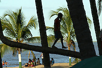 A boy walks on a leaning palm tree on the beach in Riohacha, on Colombia's Caribbean coast, on Sunday, December 11, 2005. (Photo/Scott Dalton)