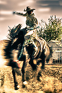 Saddle bronc rider, cowboy, abstract