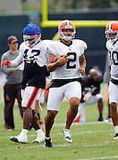 Cleveland Browns punter Reggie Hodges (2) runs with the ball during NFL football training camp at the Cleveland Browns Training Complex on Monday, August 9, 2010 in Berea, Ohio. (©Paul Anthony Spinelli)