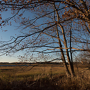 Sawyers Island, Rowley, Massachusetts is part of an 8,000 acre coastal marshland