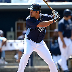 March 20, 2011; Port Charlotte, FL, USA; Tampa Bay Rays designated hitter Johnny Damon (22) during a spring training exhibition game at Charlotte Sports Park.   Mandatory Credit: Derick E. Hingle